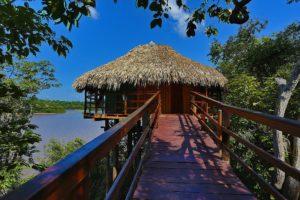voyage en Amazonie au Brésil