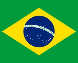 LA SECURITÉ AU BRÉSIL